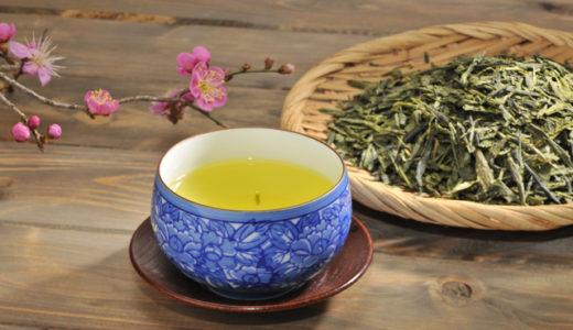 お茶ダイエット効果は絶大!40代後半で12kg痩せたサロンプロが実体験解説